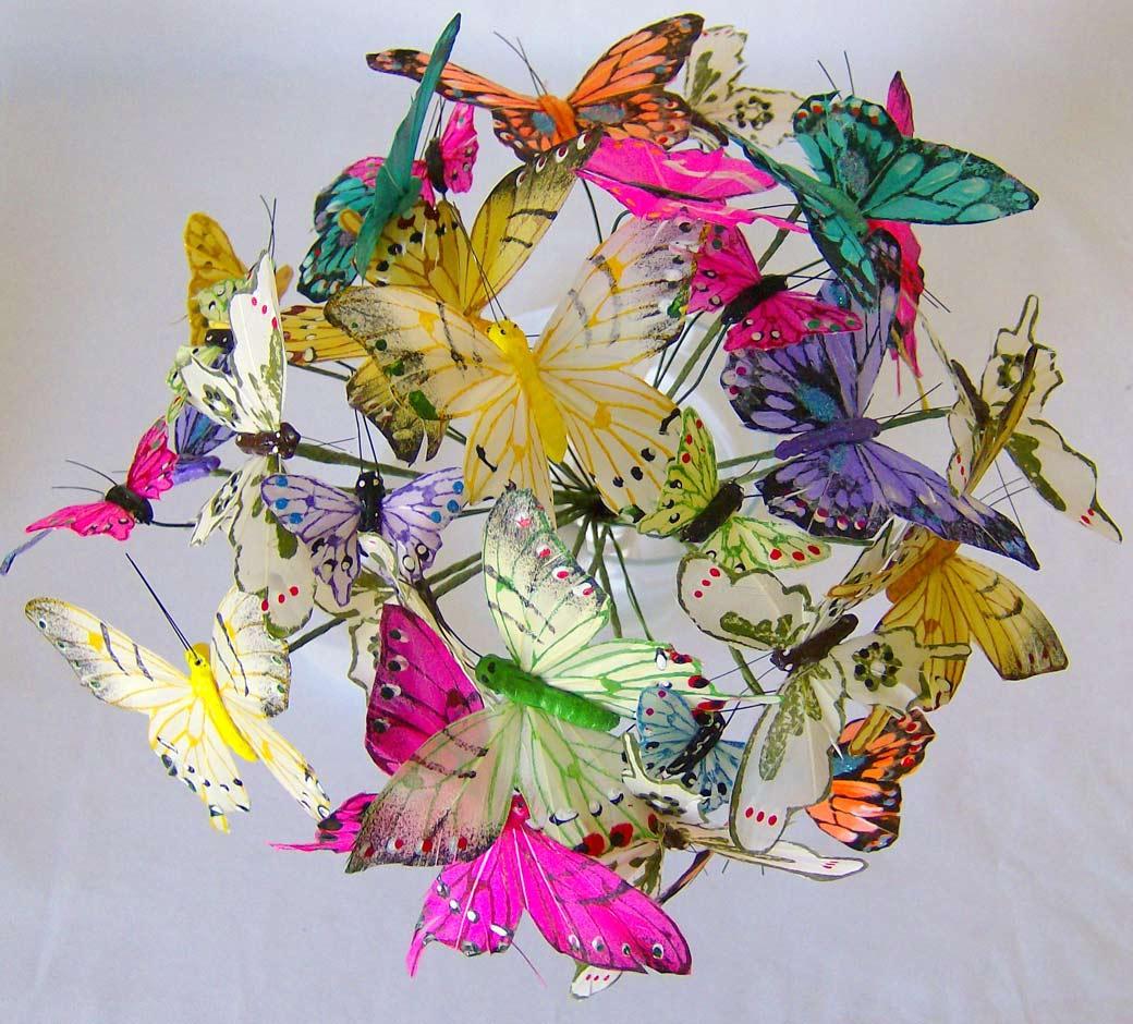 buliet motyli