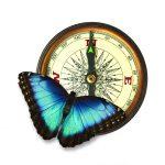 kompas_i_motyl_zDS